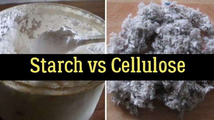 xylulose vs cellulose
