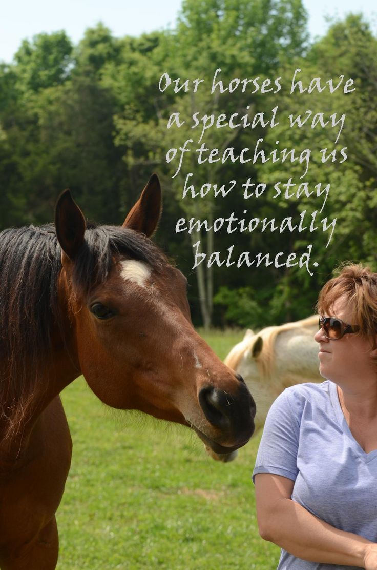 Horse equine physical therapy - 178 Best Eagala Stuff Images On Pinterest Horse Camp Horses And Summer Camp Games