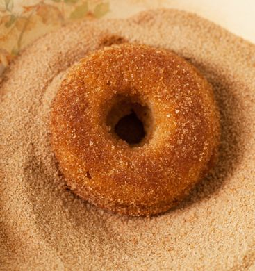 Babycakes NYC plain cake donut - gluten free, vegan, AMAZING. I have made these twice now and everyone in the family adores them. I prefer them to wheat-based donuts!