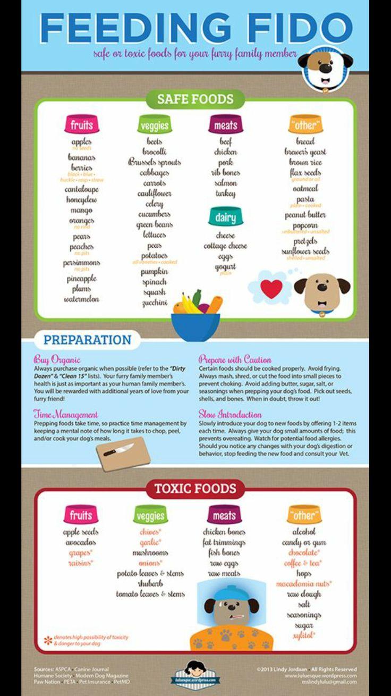 177 best Dog Food & Recipes images on Pinterest   Dog recipes, Dog ...