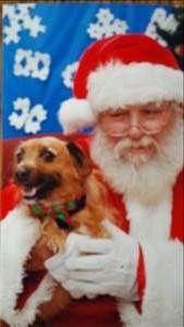 Doggy santa
