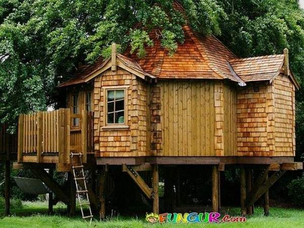 17 best images about tree houses on pinterest awesome for Cool small tree houses