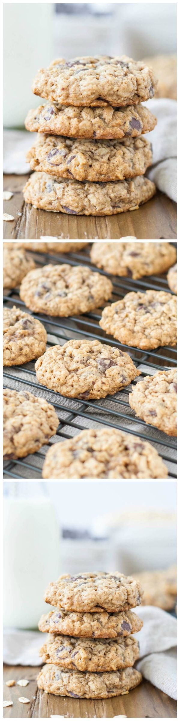 The BEST oatmeal chocolate chip cookies recipe!  These will melt in your mouth and are perfectly soft and chewy!!