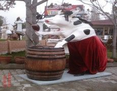 Cow Statue of winemakers