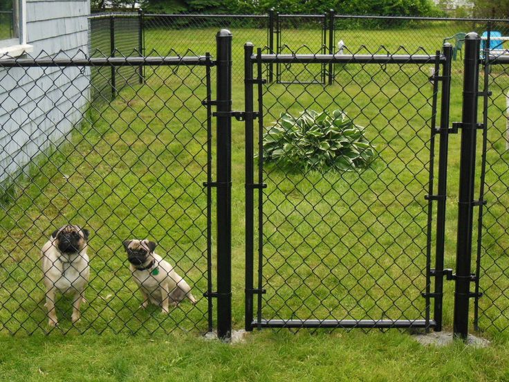 Pvc Coated Chain Link Fence Also Called Vinyl Coated Or