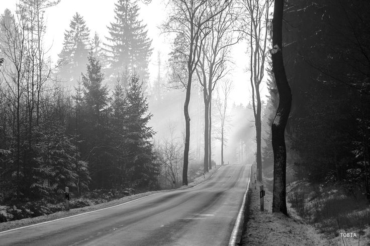 Road in Saxony - Germany - Germany, Freiberger strasse road S194 January 2016 © Tobia Scandolara