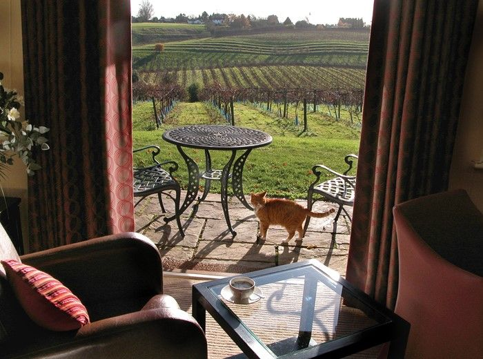 B&B Gloucestershire - Vineyard Rooms | Three Choirs Vineyard