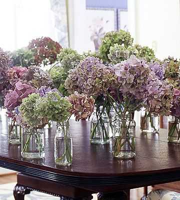 How to Dry Hydrangeas, Peonies and other types of flowers!