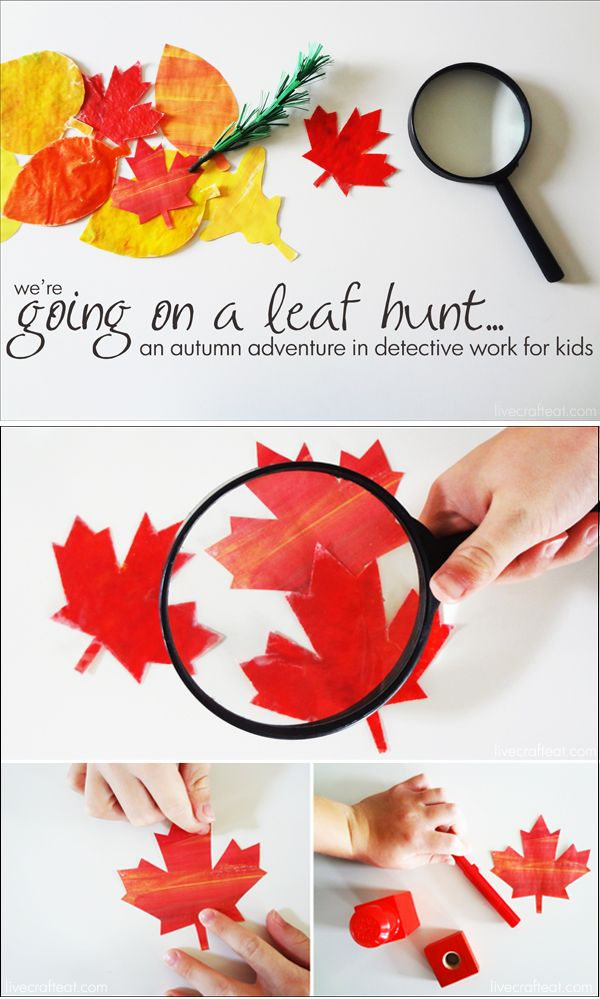 {we're going on a leaf hunt} an autumn adventure in detective work for kids *Too cute