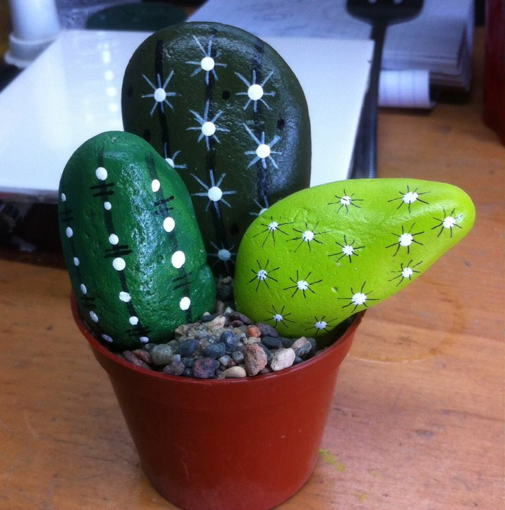 Painted these rock cactus today
