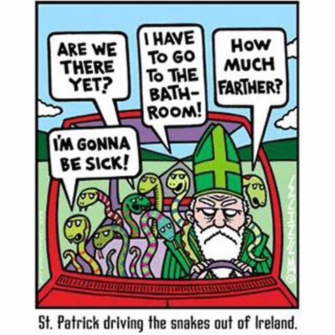 It's almost that day!: Ireland, St. Patrick'S Day, Patricks, Funny Stuff, Patrick Driving, Humor, Snakes
