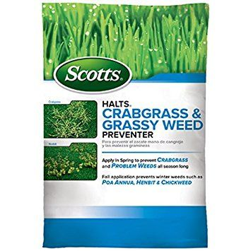 scotts fertilizer with moss control
