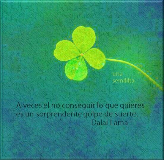 Eso dice el Dalai :)) http://www.gorditosenlucha.com/