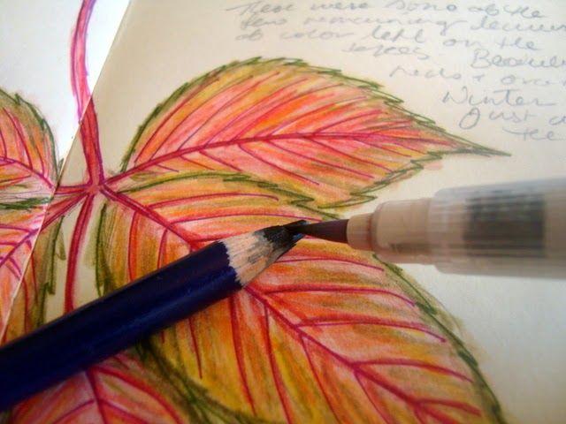 Tutorial on Watercolor Pencil Technique