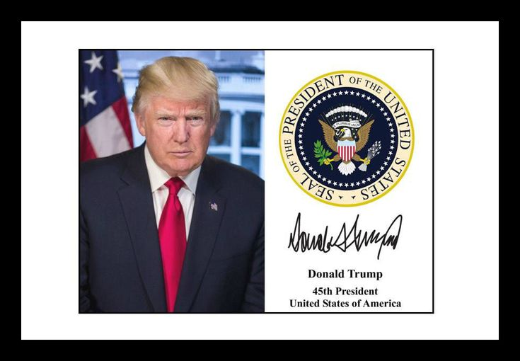 President Donald Trump Signed Presidential Seal Autograph 4x6 Photo Print USA  | eBay