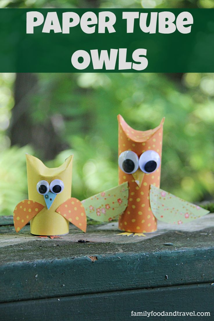 Paper tube owl craft crafts paper and families for Toilet paper tube owls
