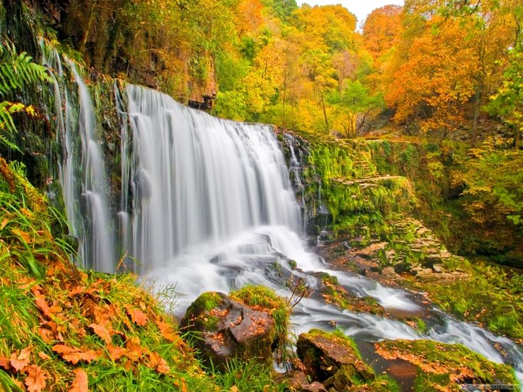 Pemandangan Air Terjun saat Musim Gugur (Autumn)