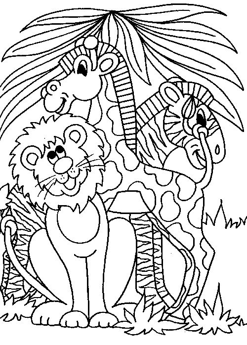 jungle color pages animal coloring pages on pinterest the clolor - Picture To Color For Kids