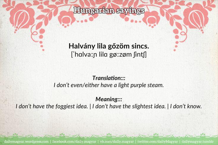 Halvány lila gőzöm sincs. [ˈhɑlvaːɲ lilɑ gøːzøm ʃintʃ] https://dailymagyar.wordpress.com/2017/01/28/halvany-lila-gozom-sincs/ #Hungarian #language #sayings #halványLilaGőz