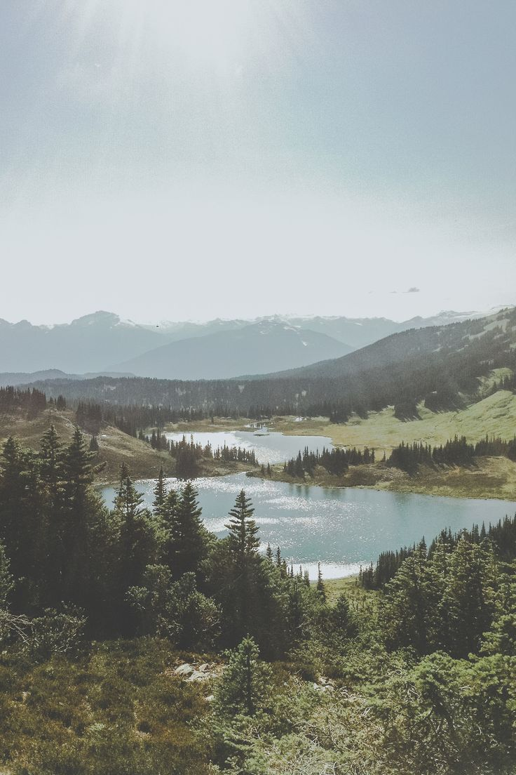 man-and-camera: Meadow ➾ Luke Gram