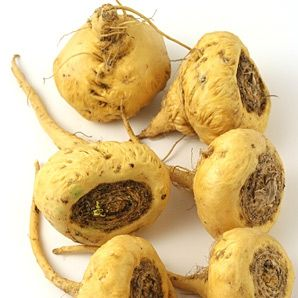 how to take maca root pills for fertility