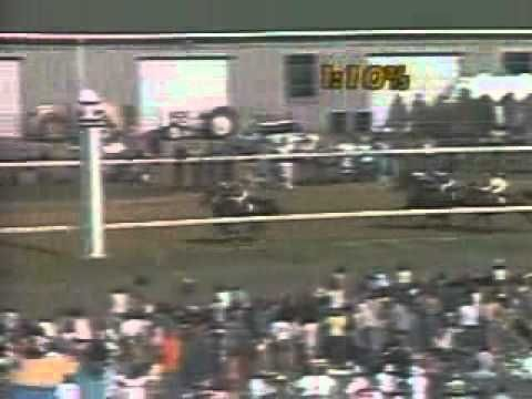 slew of people. 1977 kentucky derby - seattle slew of people