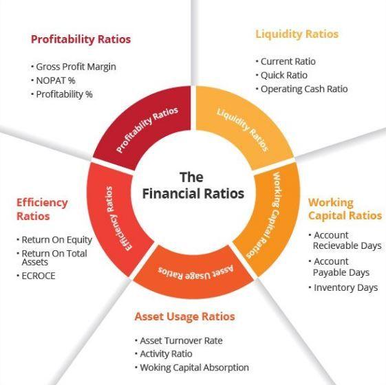 financial ratios financing constraints