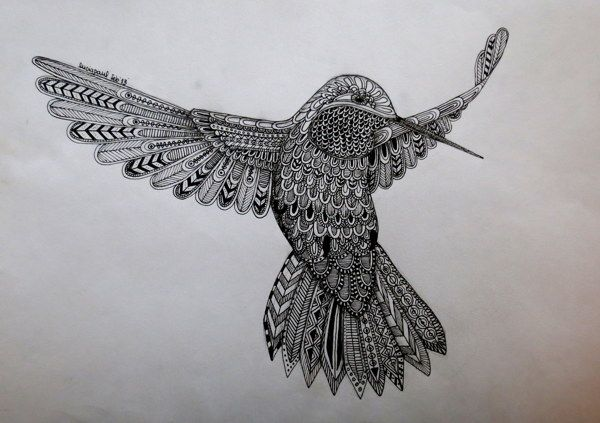 Colibri by Lucia Paul (Lu Paul), via Behance