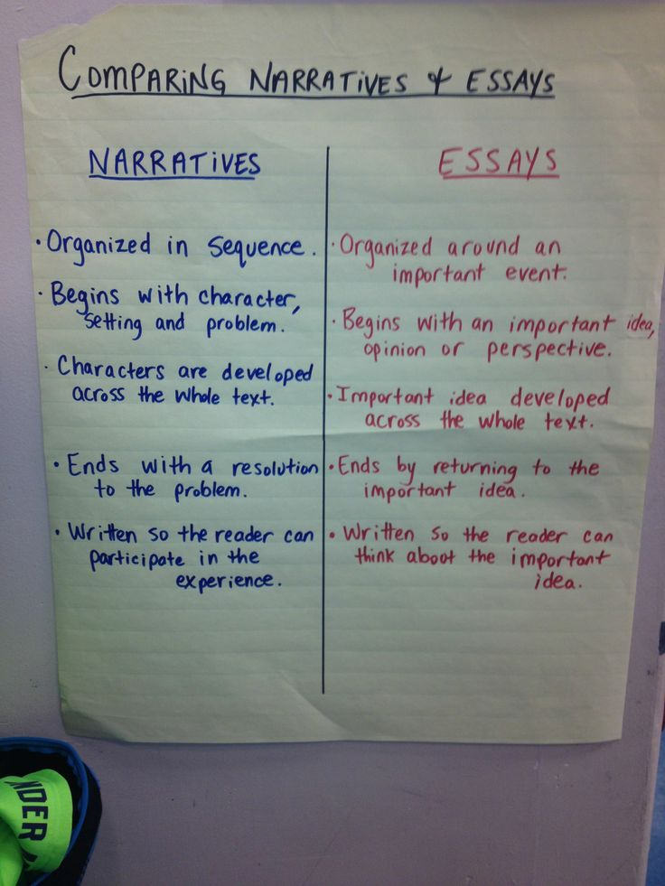 essay vs theme