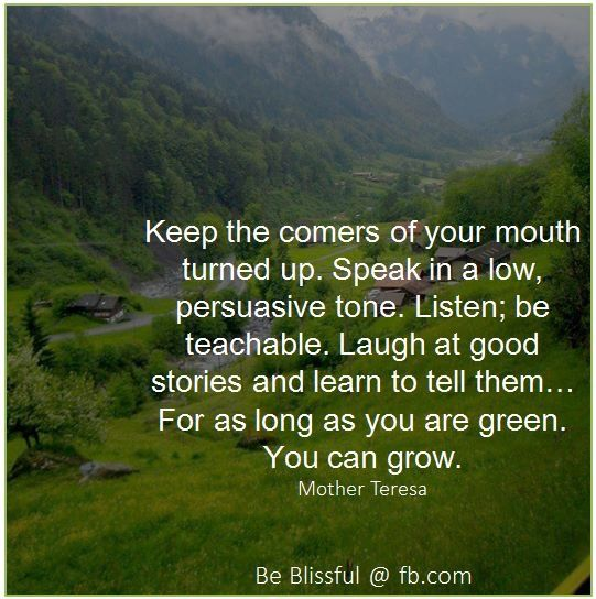 QUOTE, Growth:  'Keep the corners of your mouth turned up.  Speak in a low persuasive tone.  Listen; be teachable.  Laugh at good stories and learn to tell them...for as long as you are green, you can grow.' by Mother Teresa / repinned per Shelley Schwarz