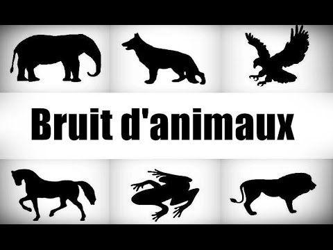 Bruit d'animaux - Sons d'animaux pour enfants - YouTube