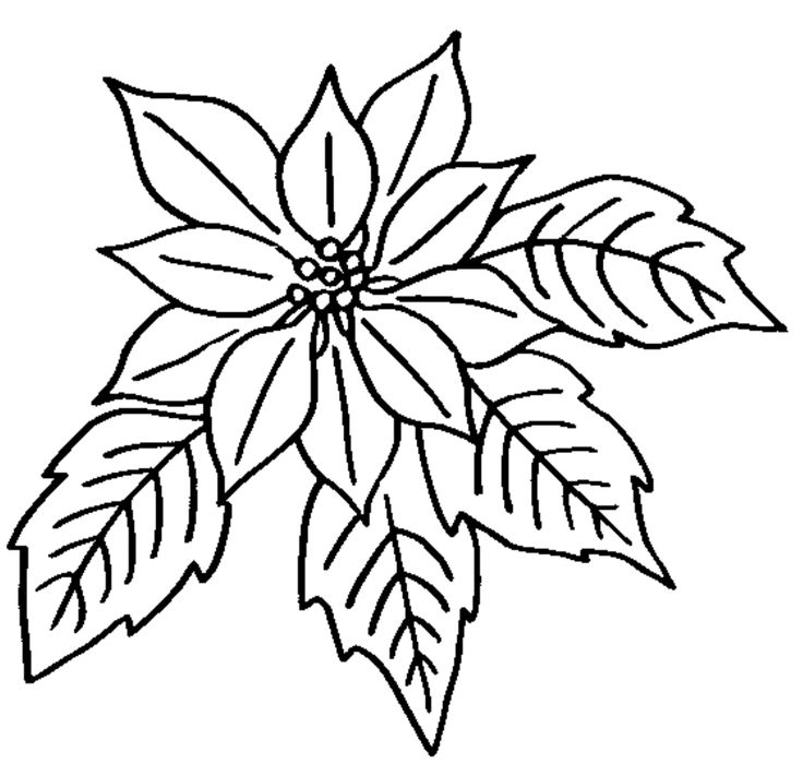 online flower coloring pages - photo#46