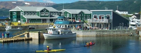 Bon Tours in Gros Morne