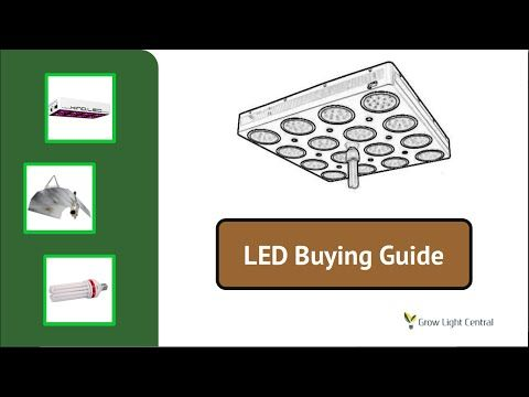 What Is The Best LED Grow Light For Weed In 2017? – Grow Light Central