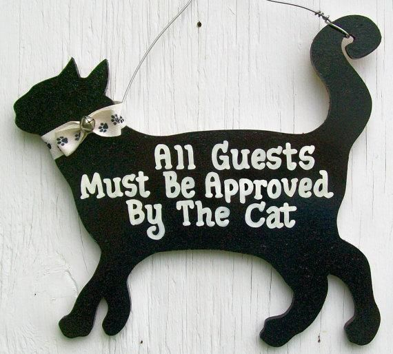 I used this rule when I was dating and married a man who likes cats