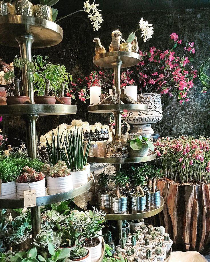 #france #paris #travel #beautiful #hangout #wife #lemarie #brunch #greatview #cafe #street #restaurant #coffee #flower #brunch  #프랑스 #파리 #여행 #역사 #마실 #까페 #레스토랑 #와이프 #거리 #브런치 #커피 #꽃 http://tipsrazzi.com/ipost/1516299223954418761/?code=BUK-hxJAOxJ