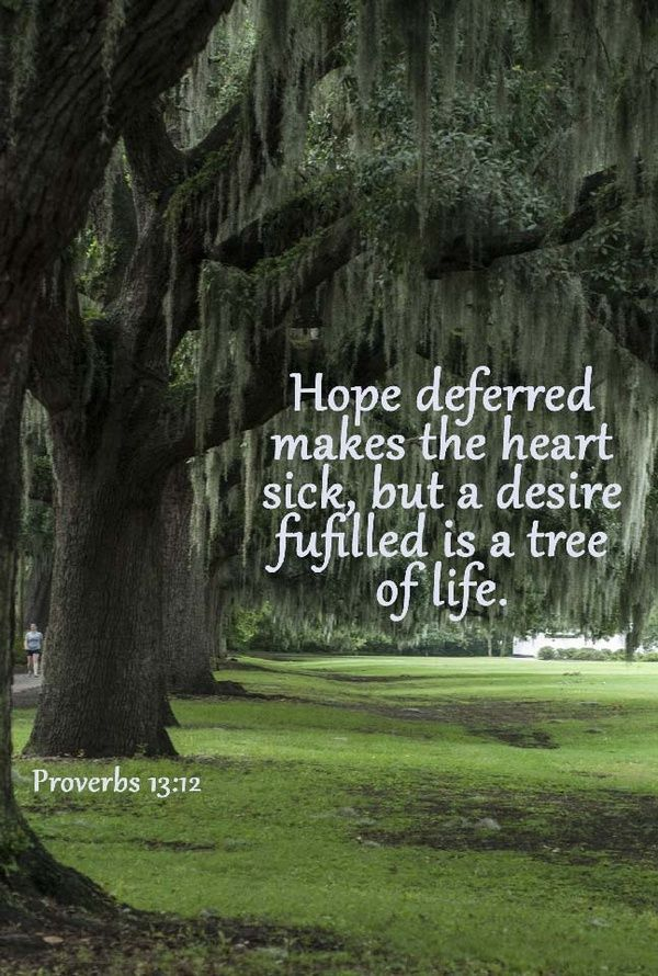 """Hope deferred makes the heart sick, But when the desire comes, it is a tree of life."" ‭‭Proverbs‬ ‭13:12‬ ‭NKJV‬‬"