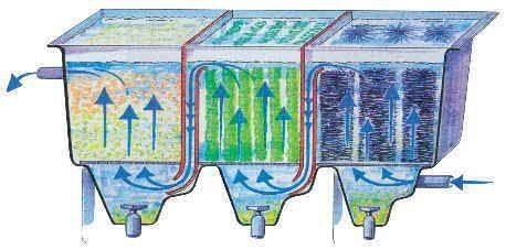 Teichfilter ,Teich Filtern , Teichfilter Anwendung, Teichfilter ...