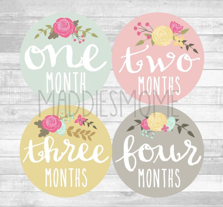 Baby Girl Month Stickers Monthly Baby Stickers, Milestone Baby Month Stickers, Monthly Bodysuit Vintage Floral (Cursive Floral) by MaddiesMomE on Etsy https://www.etsy.com/listing/207482379/baby-girl-month-stickers-monthly-baby