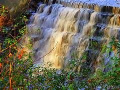 Sesquicentenial State Park - Yahoo Image Search Results