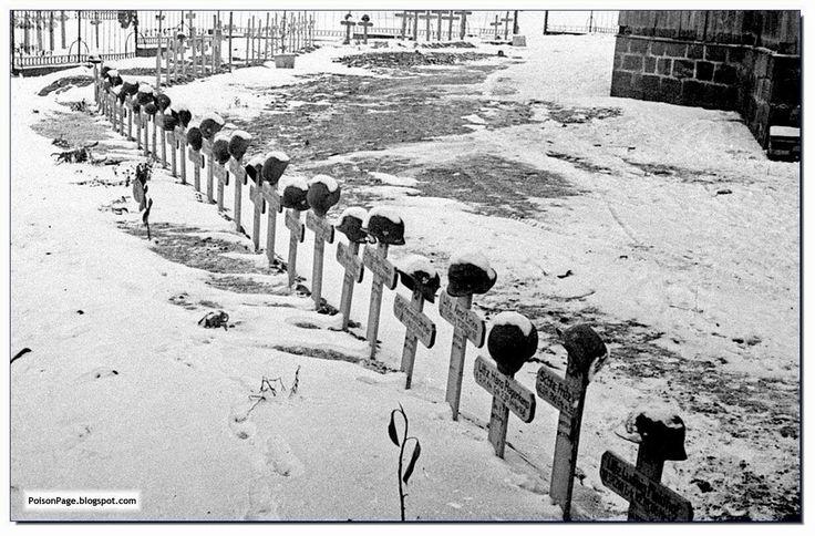 The Germans interred at Stalingrad
