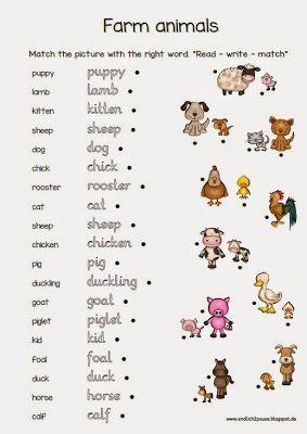 Endlich Pause 2.0: Farm animals
