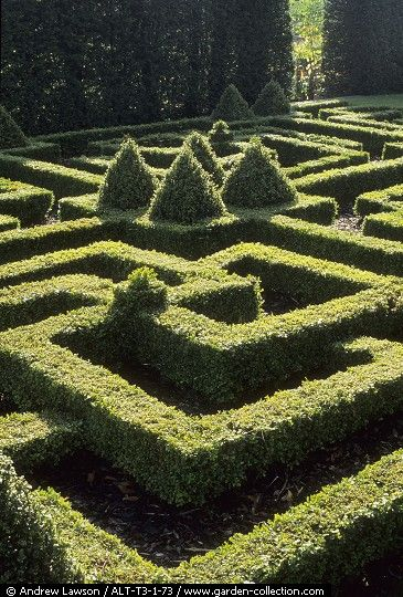 37 best images about parterreextraordinaire on pinterest for Garden maze designs