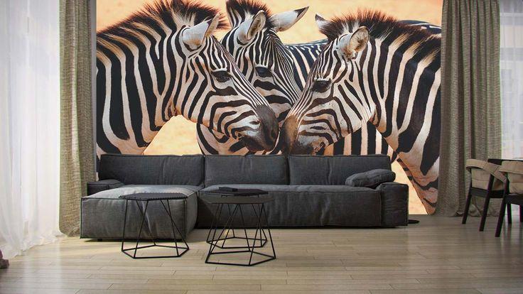 Fotomural Cebras Africanas, a $69.000 el metro cuadrado.