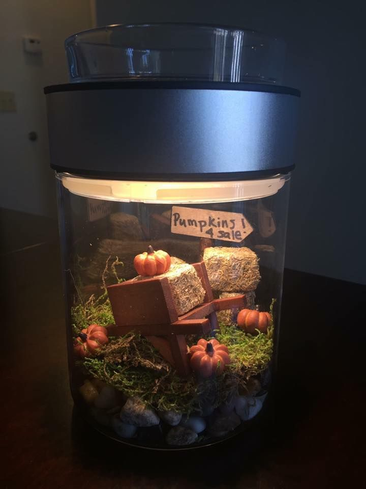 how perfect is this make a scene warmer for halloween order yours today and make your scene just in time for october - Halloween Catalog Request