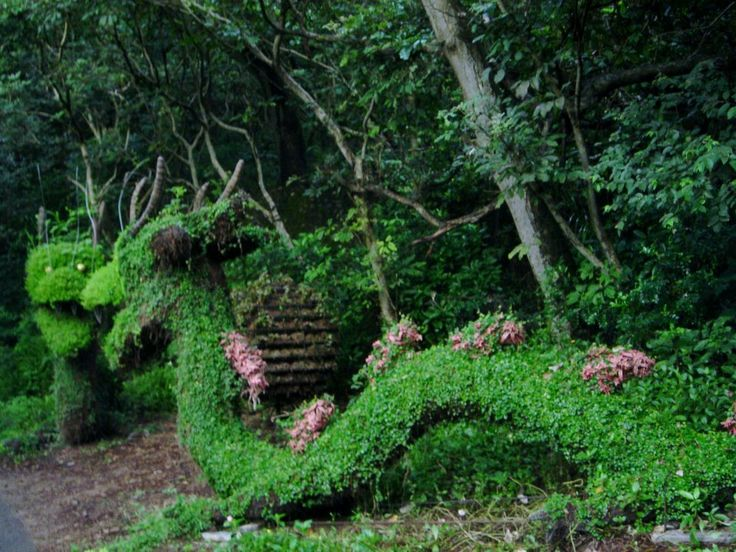 17 best images about dragons the awe of topiary art xd for Xd garden design