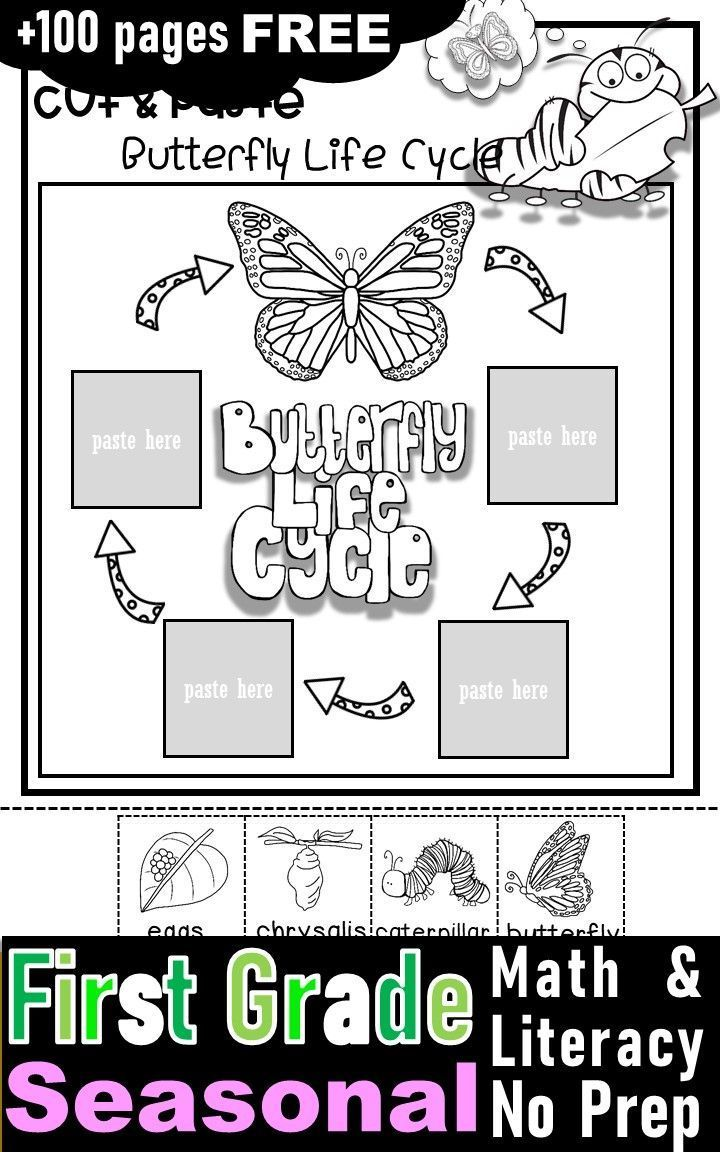 Free First Grade Activities And Worksheets With Fall Winter Spring And Winter Theme First Grade Worksheets Free Science Worksheets First Grade Curriculum [ 1152 x 720 Pixel ]