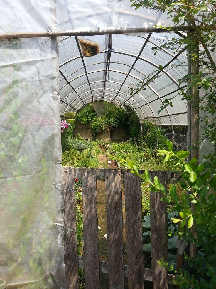 Visita al Garden VimVerde, uno scorcio mille idee in testa!