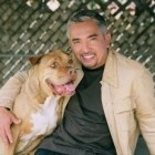After more than 150 episodes, Cesar Millan announced via Facebook that the final season of Dog Whisperer with Cesar Millan will premiere Saturday, July 7, 2012.