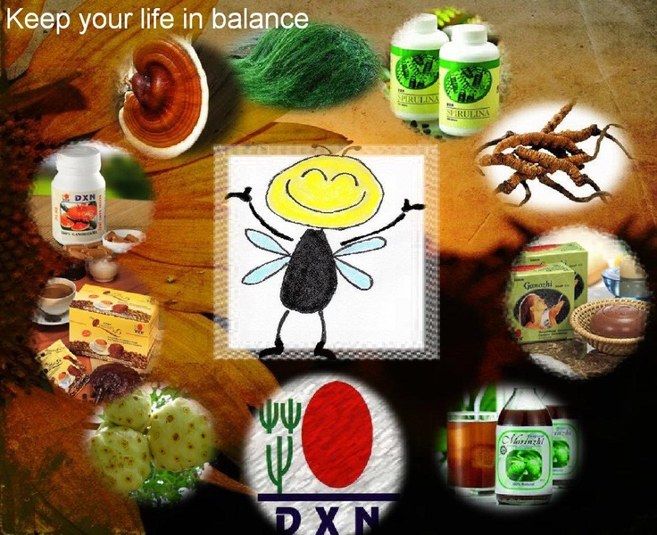 Keep your life in balance